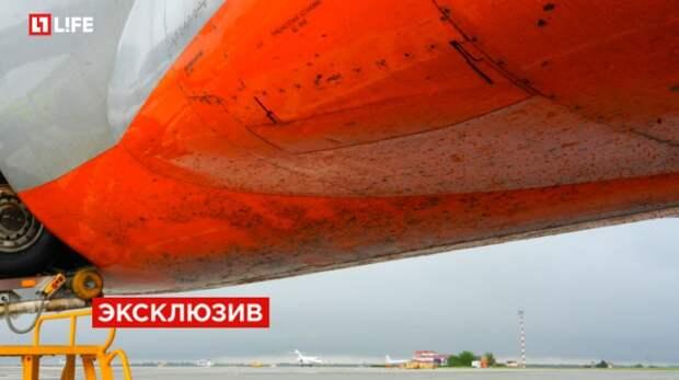 В Симферополе самолёт «промахнулся» и очутился на голой земле (фото)