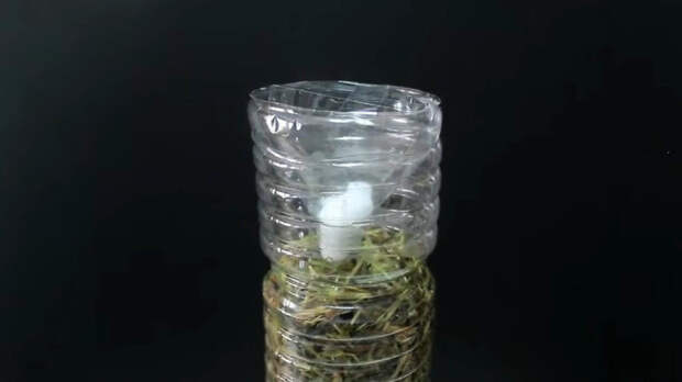 Бутылка + солома + любой гриб: самый простой и эффективный способ выращивание грибов