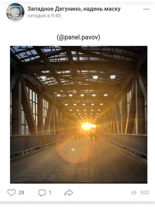Фото дня: дорога к солнцу в Западном Дегунине