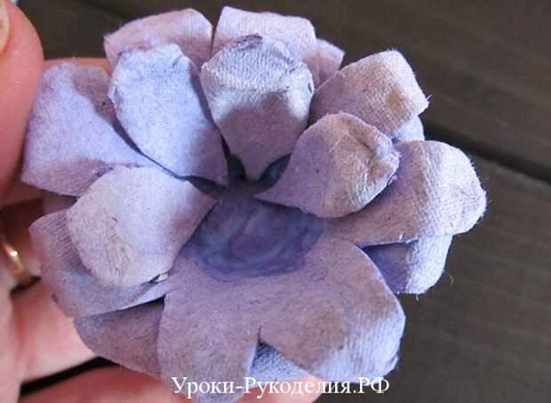 цветок для топиария