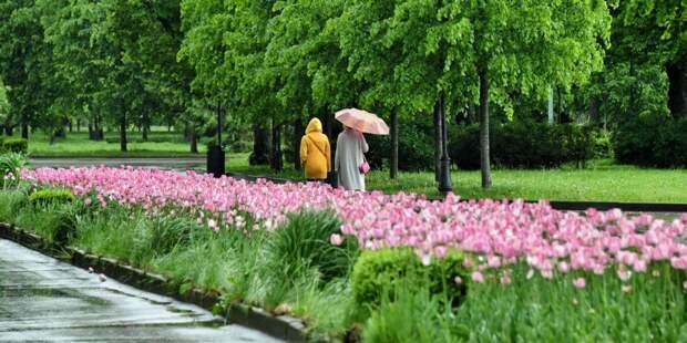 Гости Бабушкинского парка смогут принять участие в конкурсе фотографий