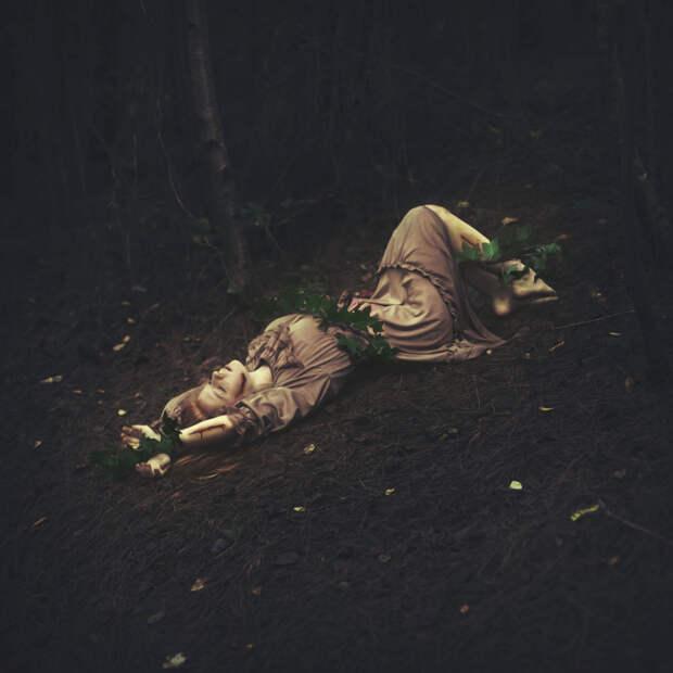 Изящные феи  в волшебном лесу