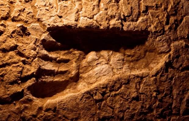 Загадочные следы стоп: отпечатки ног близ озера Уилландра.