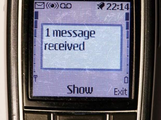 В Совфеде предложили повысить штрафы за СМС за рулем