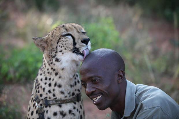 37 фотографий животных, которые вызывают улыбку - 23