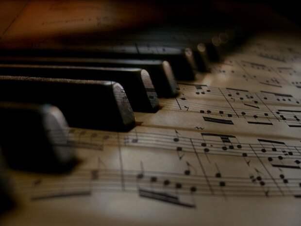 Музыкальный инструмент. Фото: pixabay.com