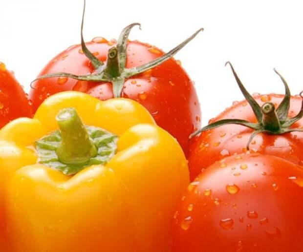 Предлагаю купить отличную рассаду томатов и перцев. . Цена: 10 руб. в Тольятти.