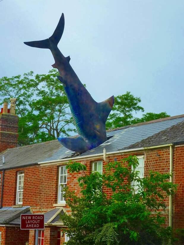 Хедингтонская акула, Оксфорд, Великобритания, Европа