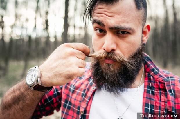 3. Борода состоит из 30 000 волосков борода, факты
