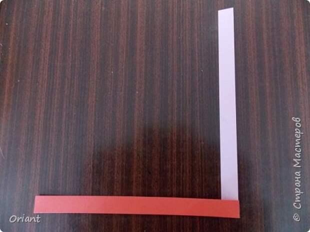 Мастер-класс Педагогический опыт Раннее развитие Бумагопластика Волшебные превращения бумажной ленточки Бумага фото 4