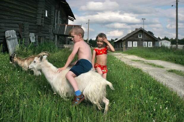 Каникулы в деревне детство, каникулы, фото