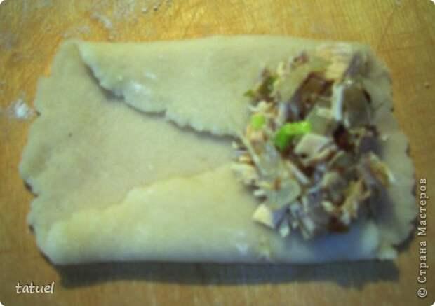 Кулинария Мастер-класс Рецепт кулинарный Мясные трубочки Продукты пищевые фото 9