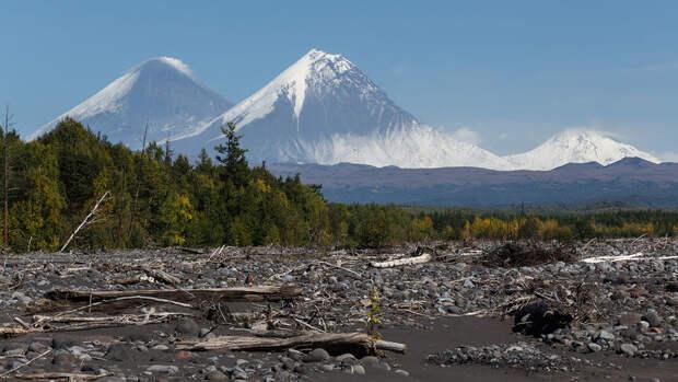 На Камчатке зафиксировали землетрясение магнитудой 6,4