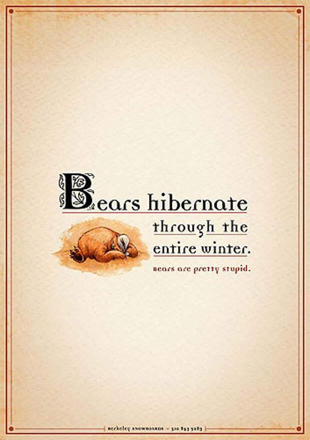 """Надпись на принте: """"Медведи спят всю зиму. Медведи - балбесы"""""""