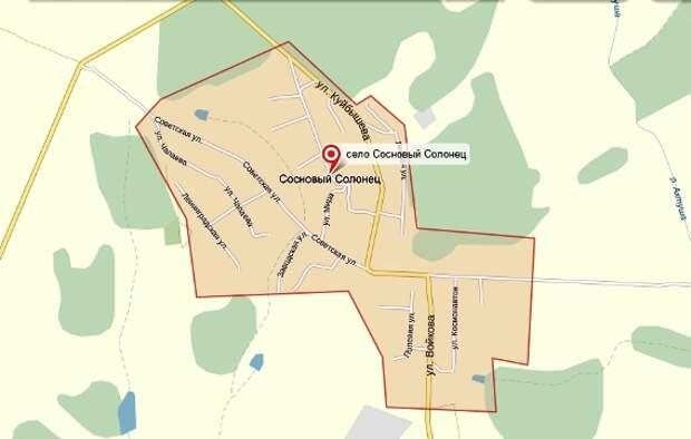 Село Сосновый Солонец на карте