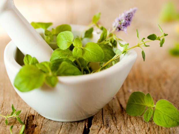 Народные средства для лечения бронхиальной астмы