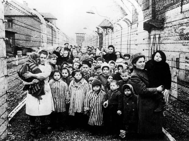Дети Освенцима.