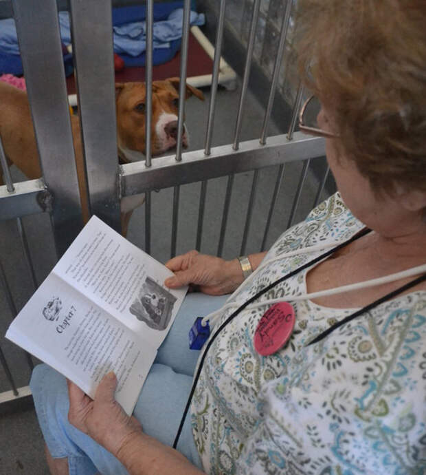 woman-reads-books-shelter-dogs-12