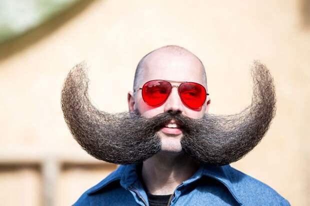 мировой чемпионат бород и усов, World Beard And Moustache Championships 2015
