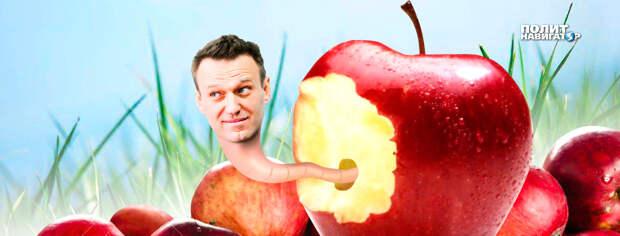 Заешь «Новичок»: «Яблоко» хочет поднести себя Навальному