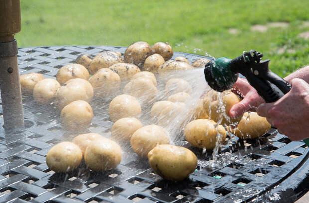 Пышное и нежное картофельное пюре: тонкости кулинаров
