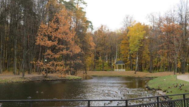 Дожди до плюс 18 градусов ожидается в Подольске в понедельник