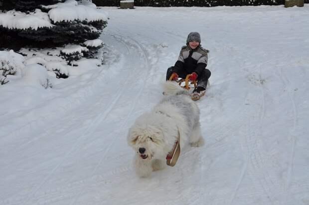 Снег придет в Удмуртию в воскресенье