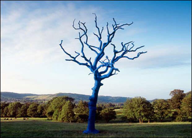После смерти деревья попадают в арт