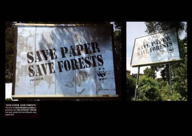 Экологи изводят деревья, призывая беречь лес