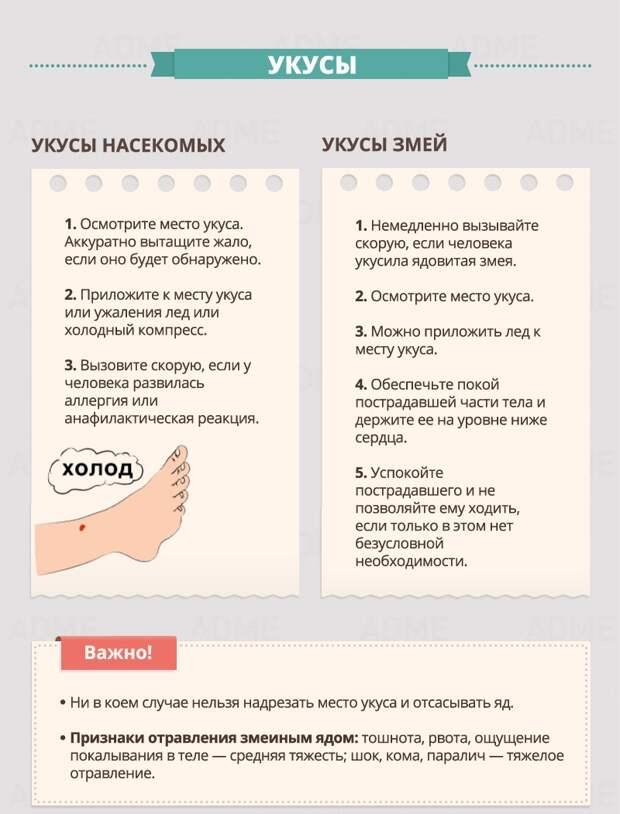 http://files2.adme.ru/files/news/part_95/952310/17847360-R3L8T8D-800-c-12.jpg