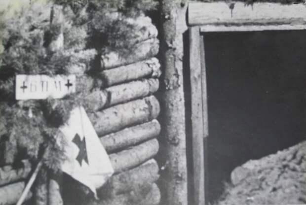 Врачом стал случайно, но после Великой Отечественной принял участие в подготовке более десяти тысяч военных врачей-специалистов