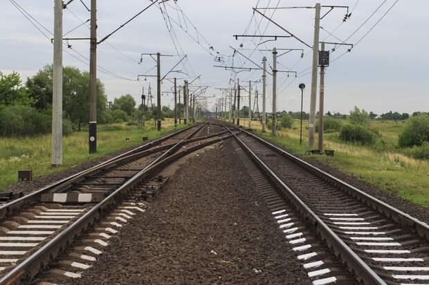 Причиной сбоя движения 20 поездов и электричек в Подмосковье стала кража 1,5 км кабеля