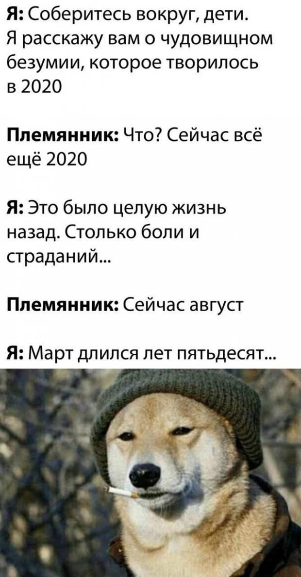 Шутка про 2020-й год