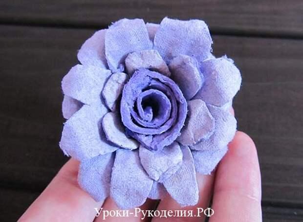 роза для топиария