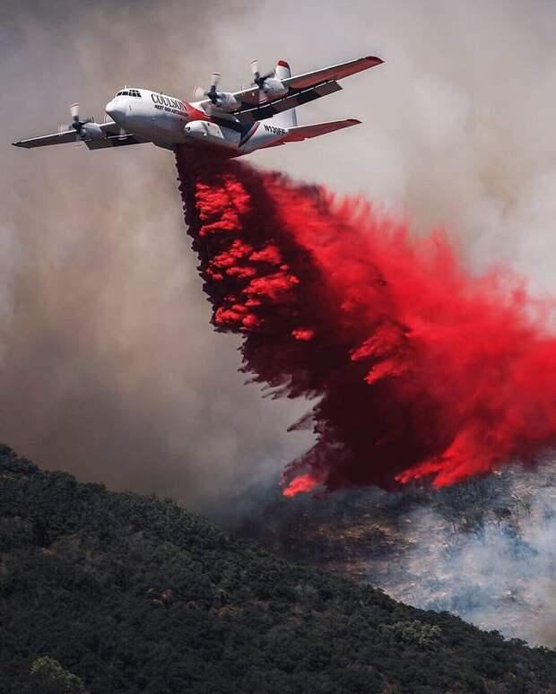 Asia Times (Гонконг): США могут обойти стороной антироссийские санкции ради борьбы с пожарами