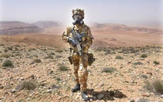 Военнослужащий Королевского танкового полка