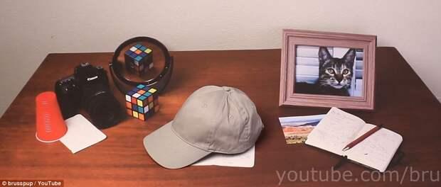 А Вы сможете угадать, что на этом видео реально, а что - иллюзия?