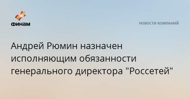 """Андрей Рюмин назначен исполняющим обязанности генерального директора """"Россетей"""""""