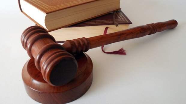 Суд арестовал на 15 суток мундепа Люсю Штейн