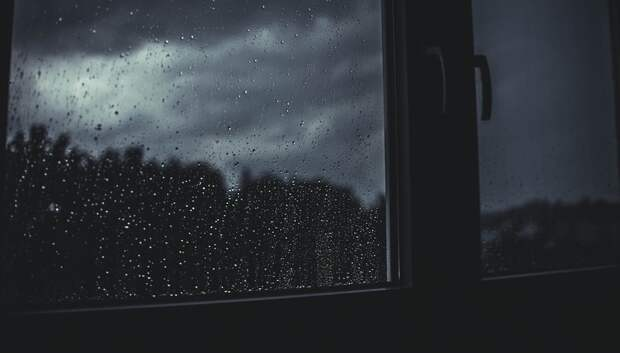 Дожди и грозы ожидаются в Московском регионе на следующей неделе