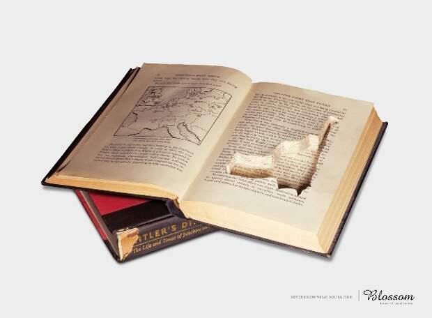 Не счесть алмазов в книжных пещерах