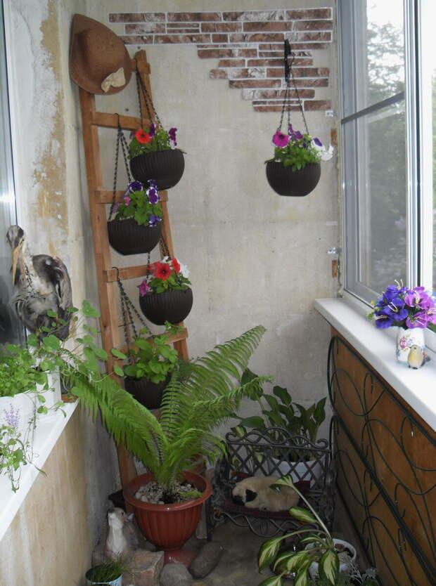 Как можно переделать балкон...в палисадник. Крутая идея!!