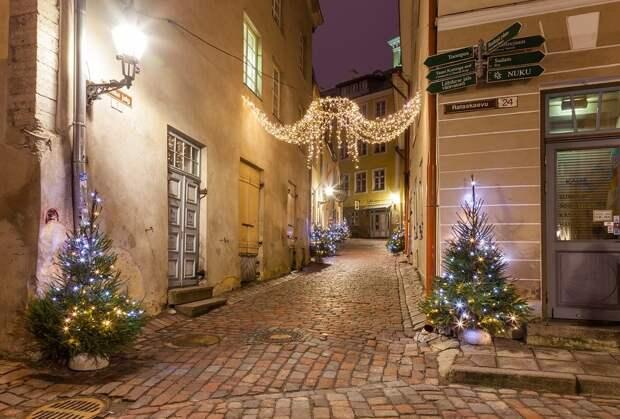 Спикер парламента Эстонии в новогоднем обращении выразил претензии к России