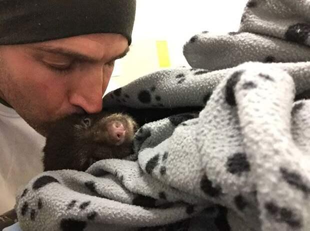 Парень спас медвежонка, рискуя попасть за это в тюрьму