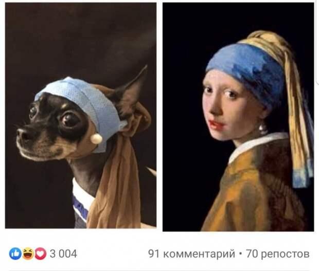 изоизоляция covidclassic russia