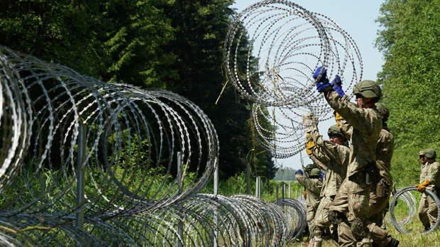 Белорусские эксперты: гражданин Ирака умер на белорусско-литовской границе из-за шока