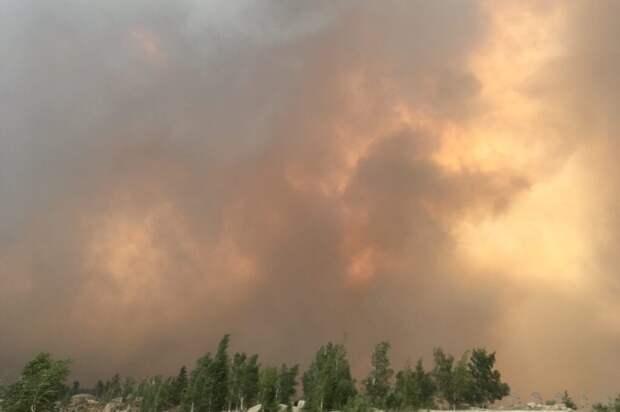 Лесные пожары в Челябинской области приняли характер «огненного шторма»