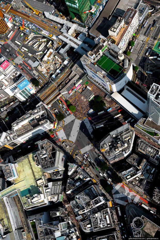 Токио с высоты: как устроена столица Японии