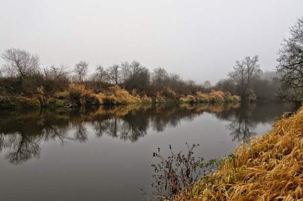 Житель Удмуртии до смерти забил знакомого и скинул его тело в реку