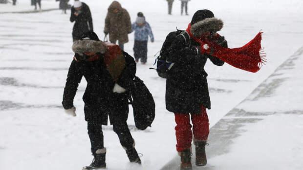 В Москве в четверг ожидается до -12°С и метель